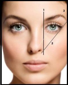 nariz-proporciones