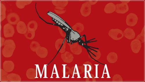 dia de la malaria