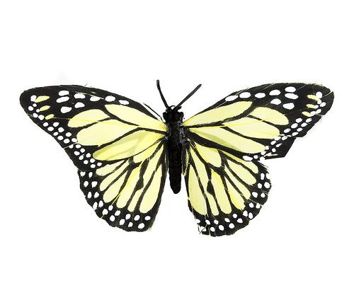 zapatos mariposa
