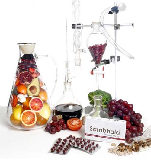 sambhala-en-laboratorio
