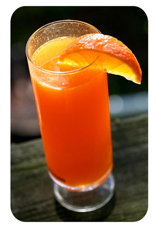 baja-mimosa