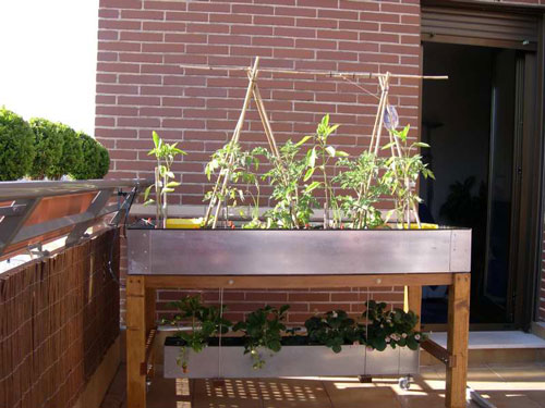 La huerta ecol gica se impone en la ciudad puedes empezar - Huerto en la terraza ...