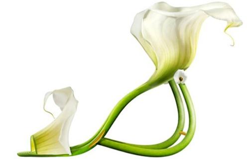 Plant-shoes