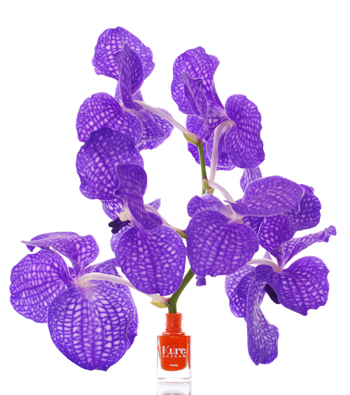 kure bazaar afrika flower