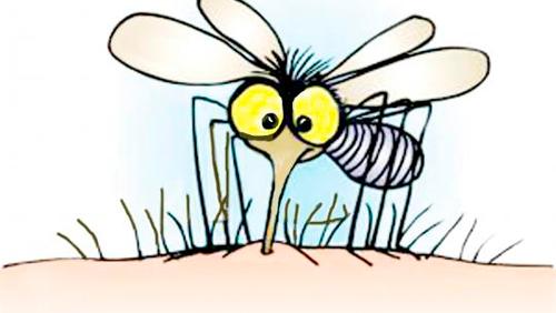 Picaduras de insectos en niños