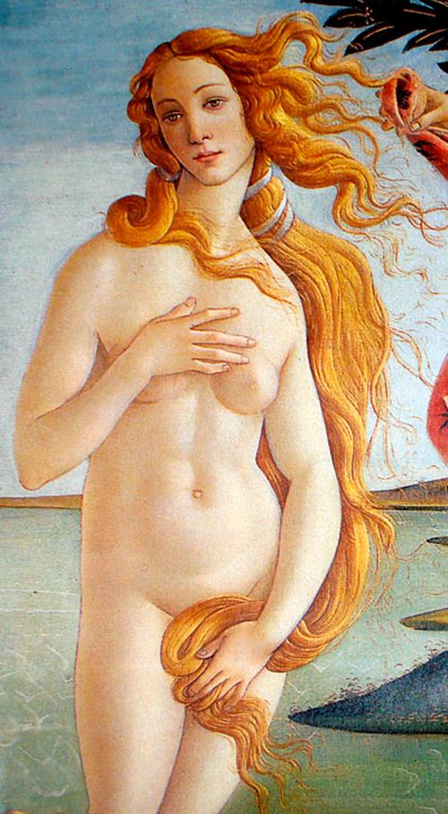 nacimiento venus botticelli