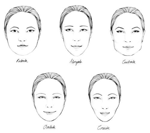 Dibujo de los cinco tipos de rostro