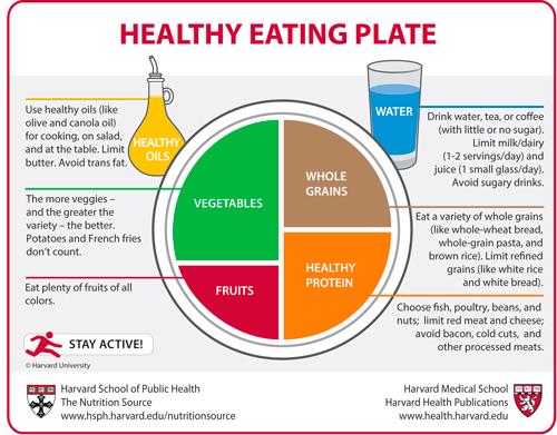 piramide-nutricional-dieta-saludable-harvard-leche