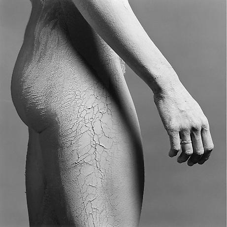 Lisa_Lyon_Mapplethopre_1981_Zerquera