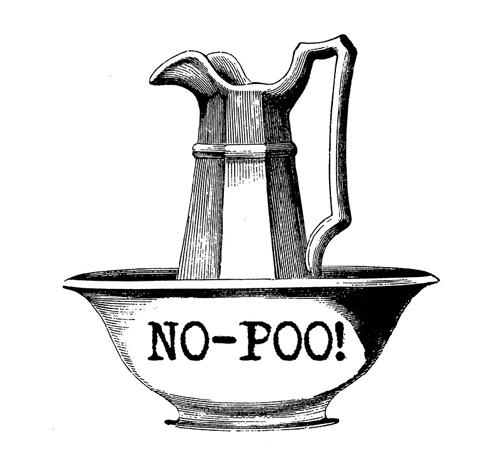no-poo-sin-champu-bicarbonato