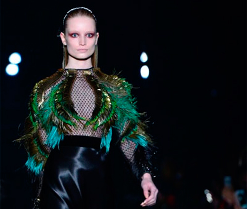 pavo-real-peacock-tendencias-gucci