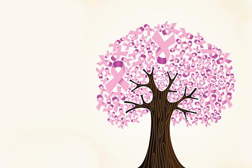 Mamografías, cáncer de mama, y reconstrucción mamaria ...