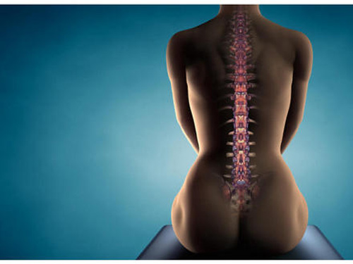 quiropractica-espalda