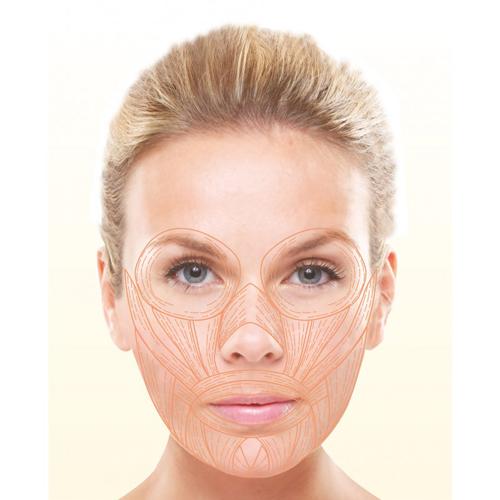 appareil-electrostimulation-visage-pro-lift - copia baja