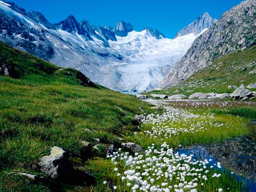 cosmetica-alpure-alpes-suizos
