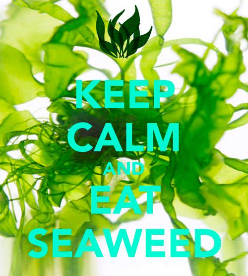 espirulinas-algas-propiedades