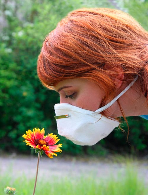alergia-polen-primavera-remedio-natural-aceite-perilla