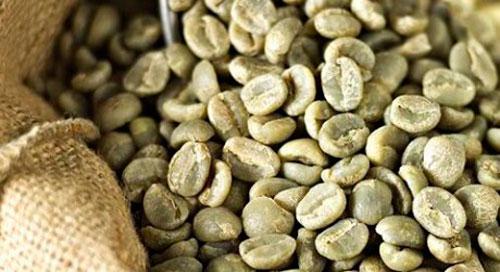 cafe-verde-460x250