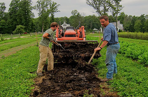 buendiario-rusia-lleva-granja-cultivo-organico-gran-escala-vegetales-1