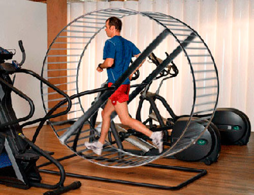 man-in-mouse-treadmill