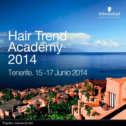 hair-trend-academy-2014