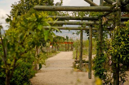 jardines-museo-internacional-perfumeria-grasse-cenadores-loccitane