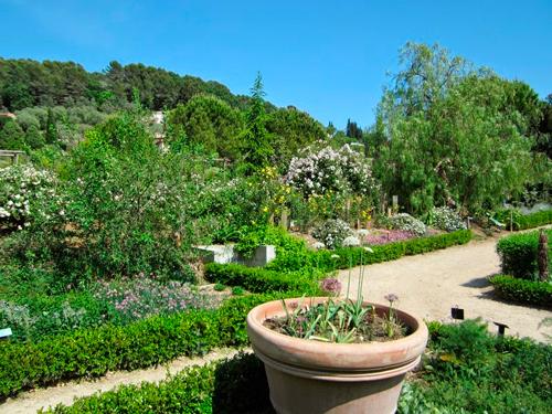 jardines-museo-internacional-perfumeria-grasse