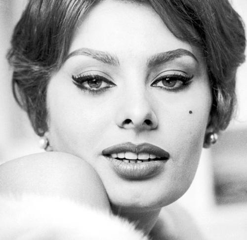 sofia-loren-eyeliner-grafico