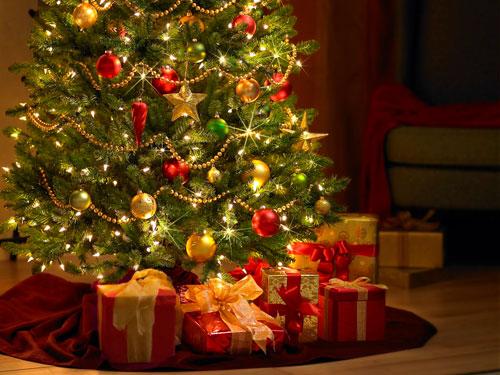 Fotos Profesionales De Navidad.Cheques Regalo De Belleza Profesional Bellezapura
