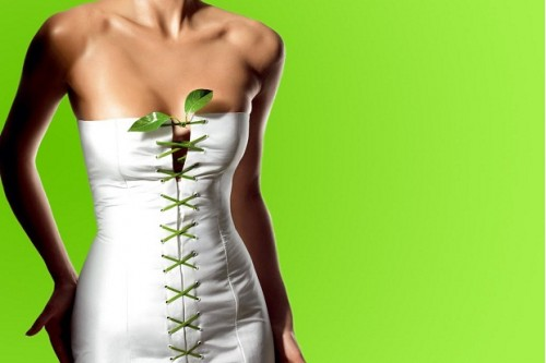 plantas-para-adelgazar
