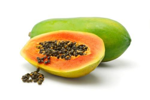 papaya fermentada fpp