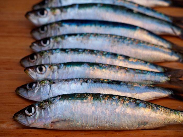 pescado-azul-salud-cardiovascular-semana-del-corazon