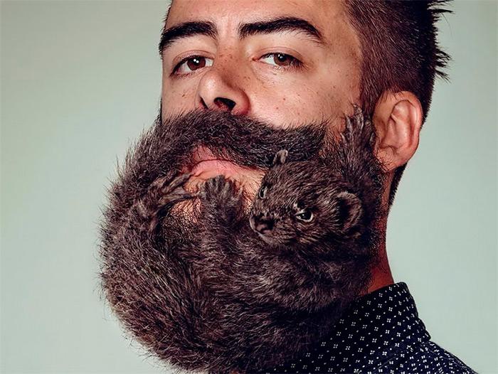 trasplantes-injertos-barba-hipster