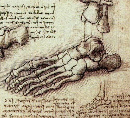 biomecanica pies salud belleza