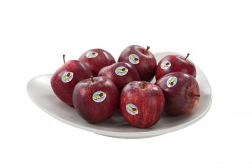 val_venosta frutas manzanas