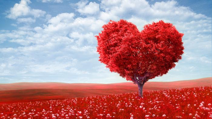 regalos-san-valentin-rojos