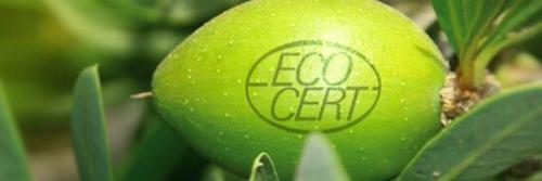 sellos-verdes-garantia-organica-1