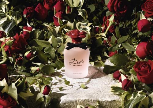 Dolce Rosa Excelsa_dolce gabanna