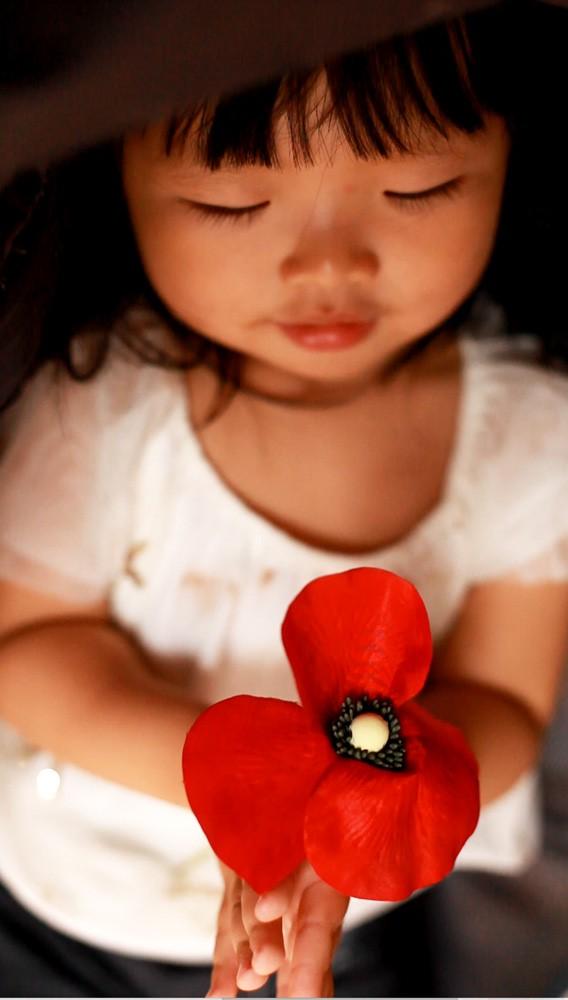 Dia  de la Amapola Kenzo Cruz Roja