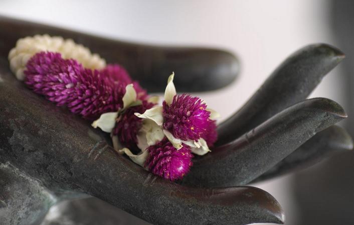 Sheva-masaje-tailandes-4