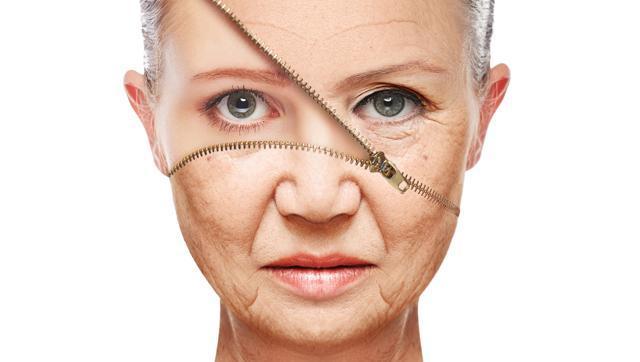 xpl piel artificial
