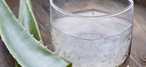 aloe-vera-para-beber-10-beneficios-2