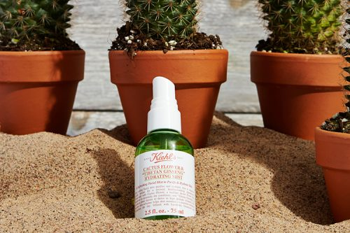 hidratantes-al-rico-cactus-1
