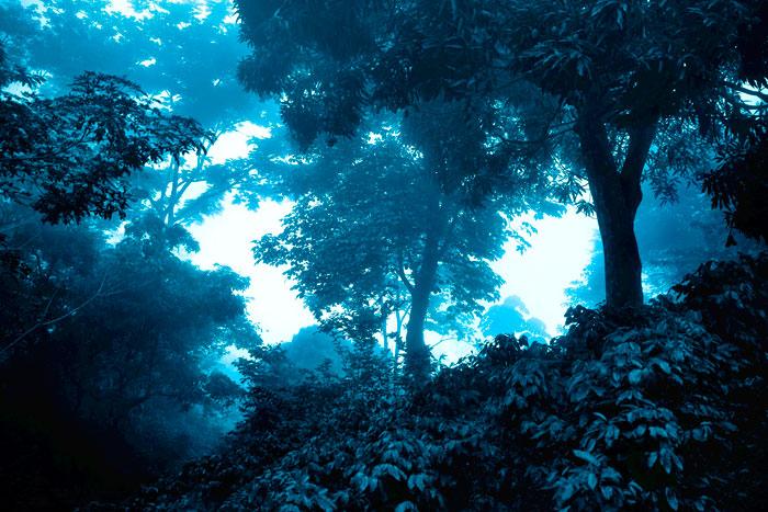chanel-blue-serum3