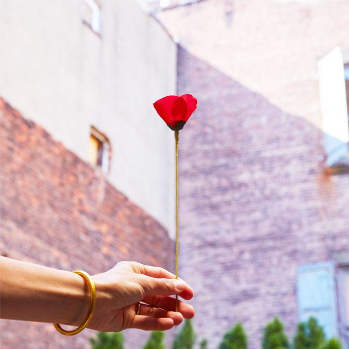 Flower Kenzo Dia De La Amapola Accion Solidaria