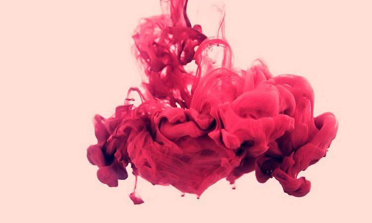 Perfumes Rosas 2017