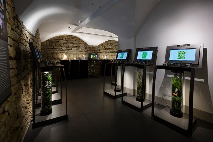 Museo Villoresi Florencia