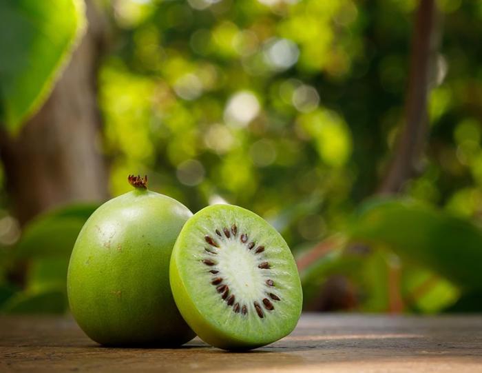Kiwi Berry
