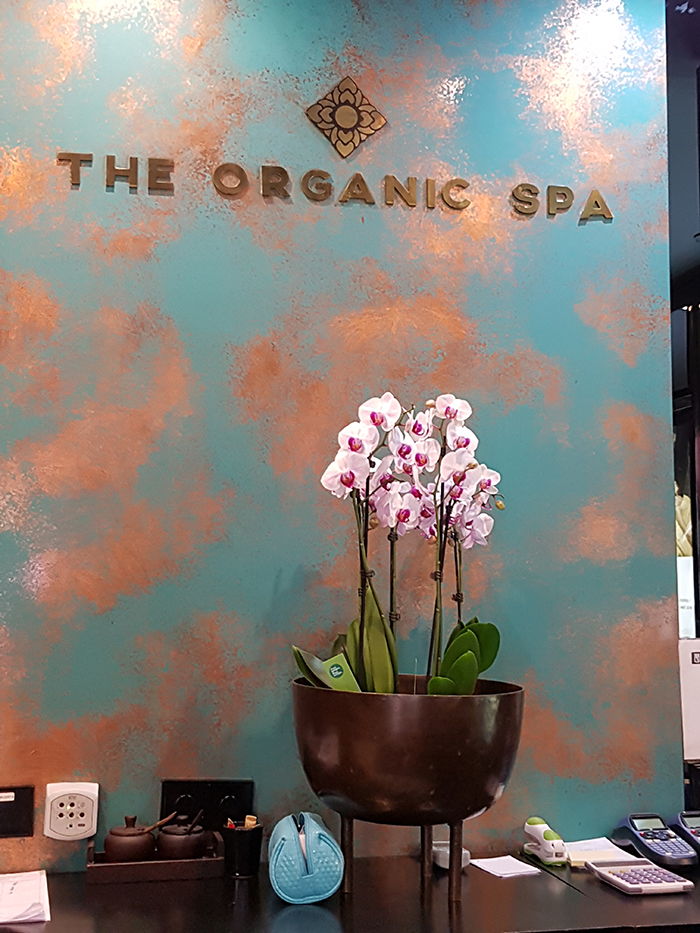 Logo The Organic Spa Web