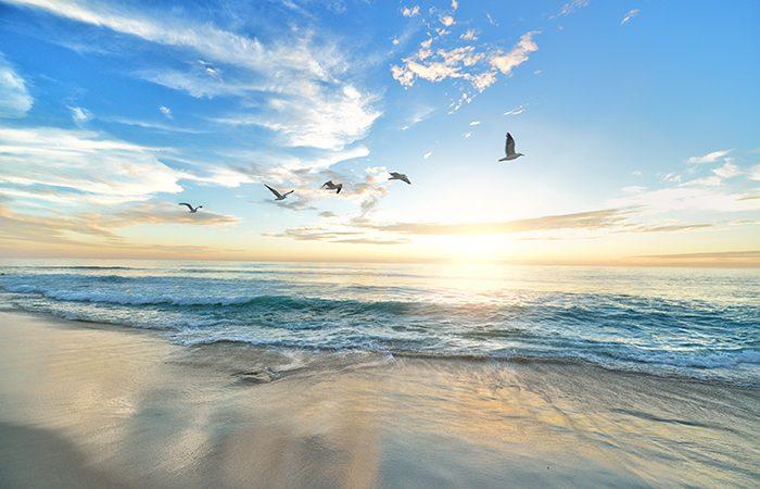 Mar Playa verano